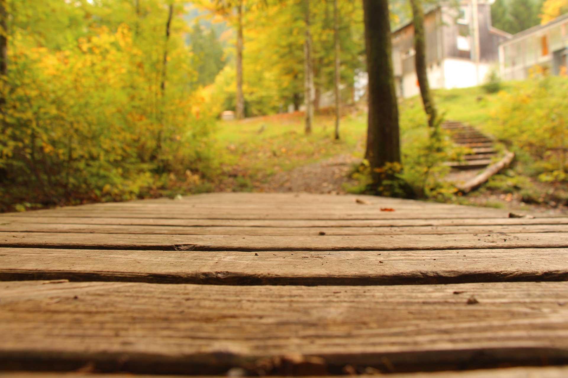 Holzsteg im Gartenbereich des Studienzentrums Josefstal