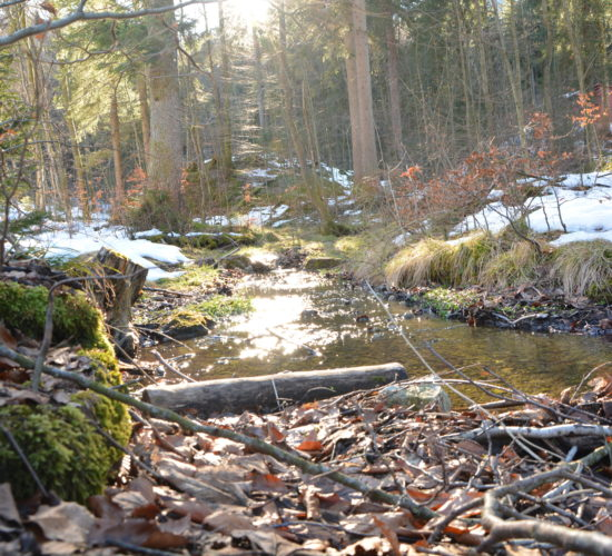 Bach im Wald, Erlebnisgarten Josefstal